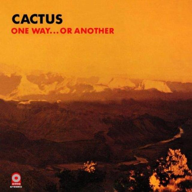 Happy Anniversary: Cactus, One Way...Or Another