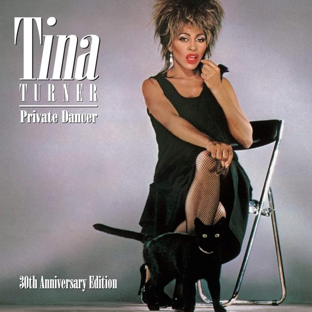 "Once Upon a Time at the Top of the Charts: Tina Turner, ""What's Love Got to Do with It?"""
