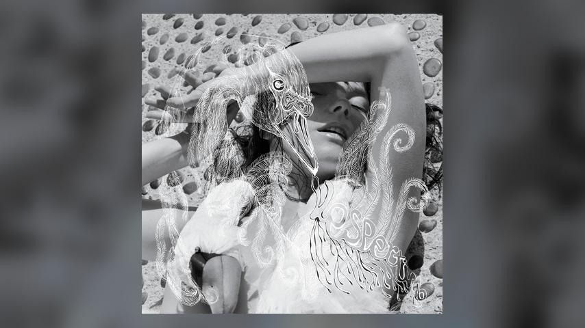 Bjork, VESPERTINE Album Cover