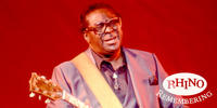 Remembering Albert King