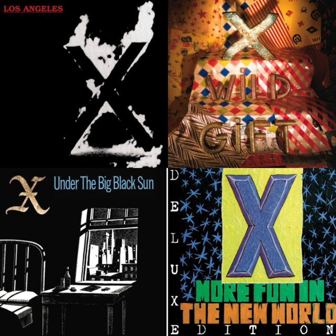 Happy Birthday, John Doe - X, The Flesh Eaters, The Knitters
